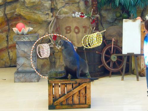 鳥羽水族館8
