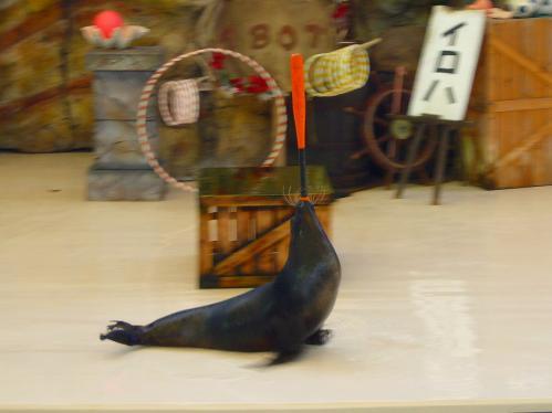 鳥羽水族館10