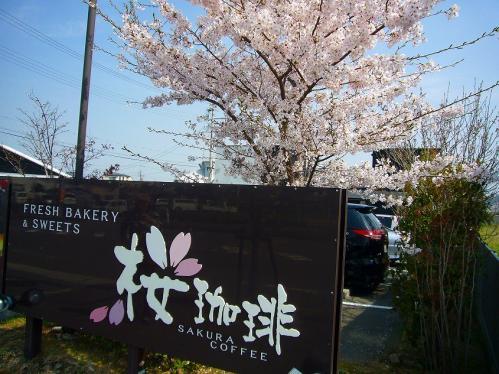 桜珈琲_看板