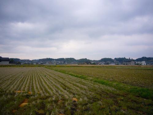 岡山_畑2