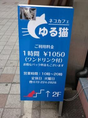 s_CIMG3384.jpg