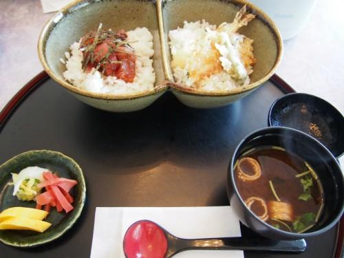 コージュ高鷲_2色丼