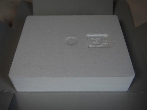 P1200193