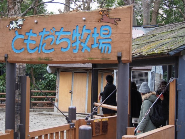 上野動物園_ともだち牧場